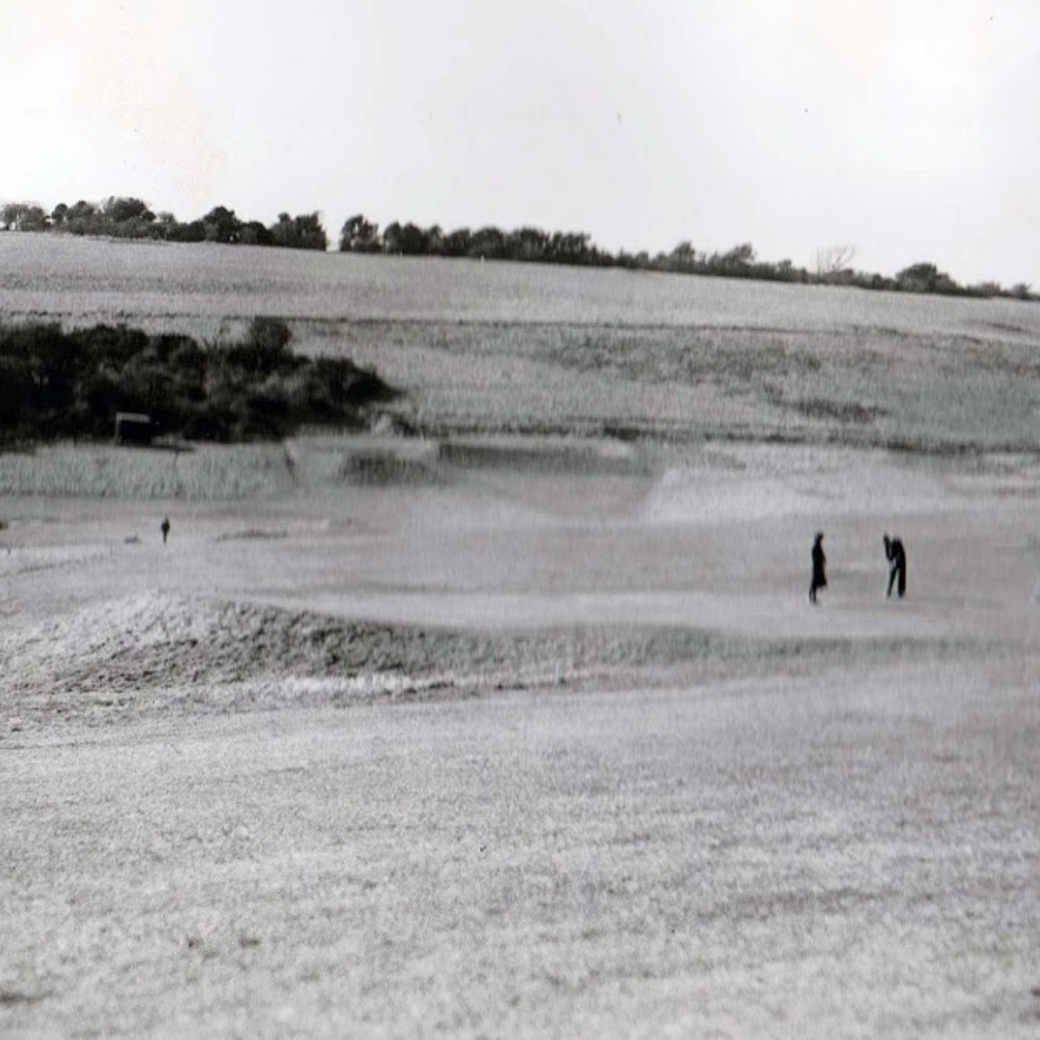 1947. The 3rd green lower.